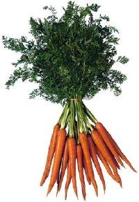 carrots-4