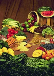 plantfoods