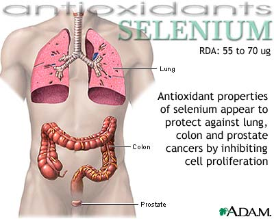 selenium-antioxidant